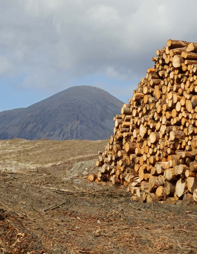 Log stack - Isle of Skye, Scotland