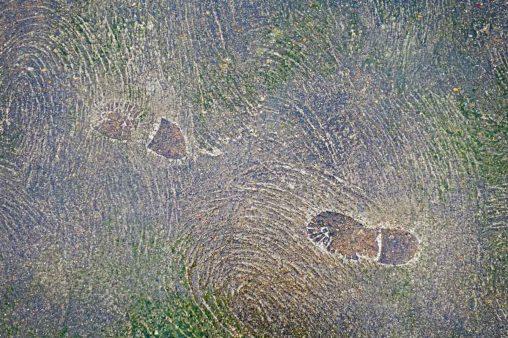 Wet cement footprints at Walcott beach Norfolk